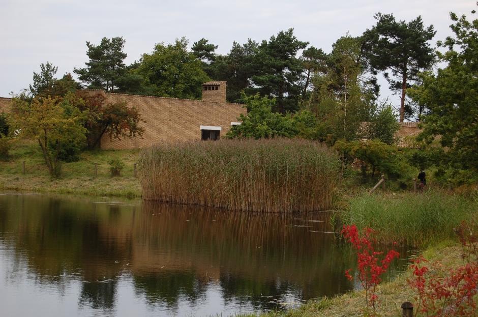 lago16