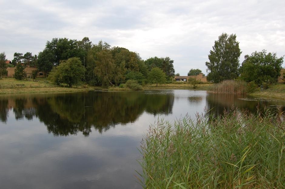 lago19