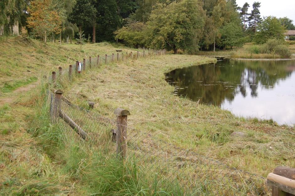 lago3