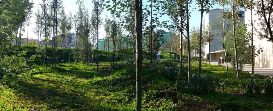 baas-arquitectura-jardi-can-framis-1