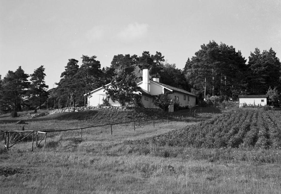 Stennäs_mot_norr
