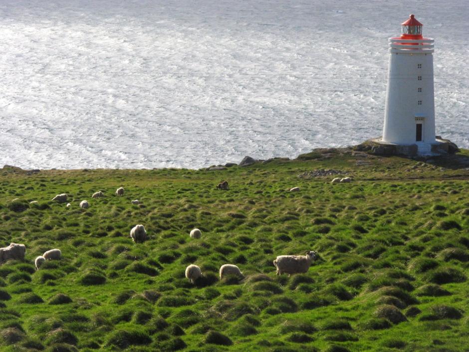 island_songs_viaje_musical_islandia_olafur_arnalds_739238142_1400x1050