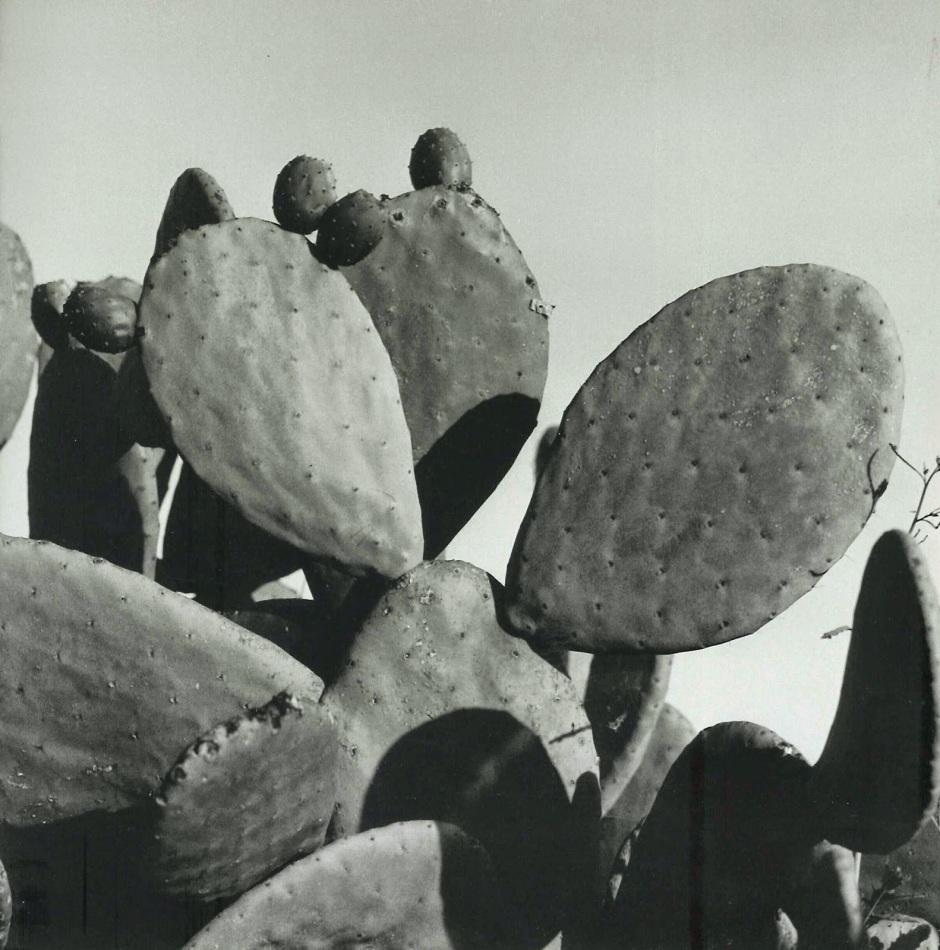 17-puerto-lumbreras-1967